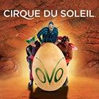 01.01.17 Cirque 144x144.jpg