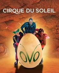 01.01.17 Cirque 192X236.jpg