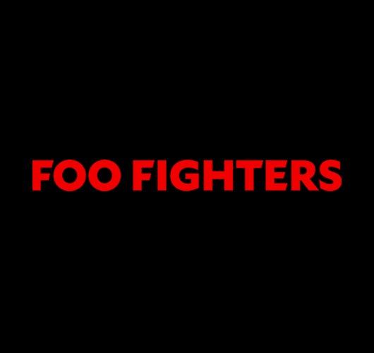 10.12.18 Foo Fighters v2 530x500.jpg