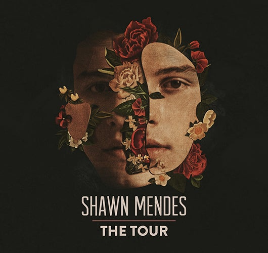 More Info for Shawn Mendes Announces Global Arena Tour For 2019